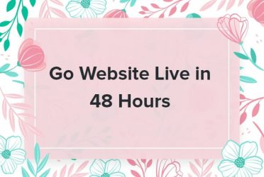 Go Website Live in 48 Hours