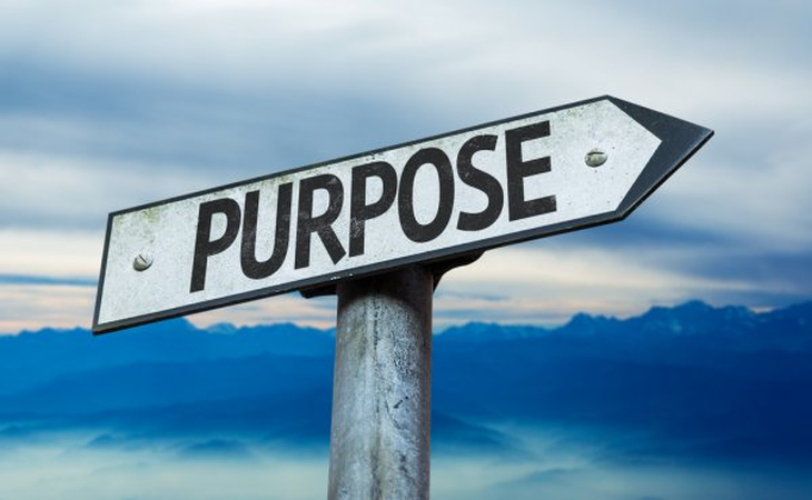 What is your Purpose of your website?