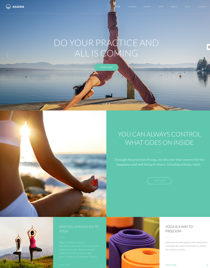 Asana WordPress Theme