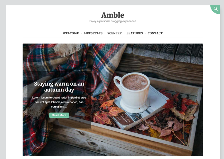 Amber WordPress Themes for Writers and Authors