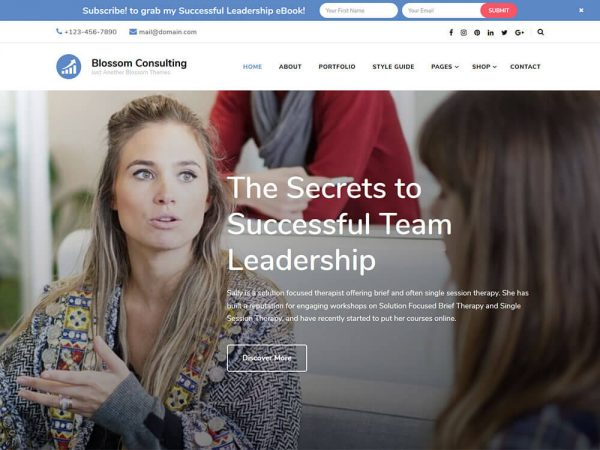 Blossom Consulting free WordPress Theme