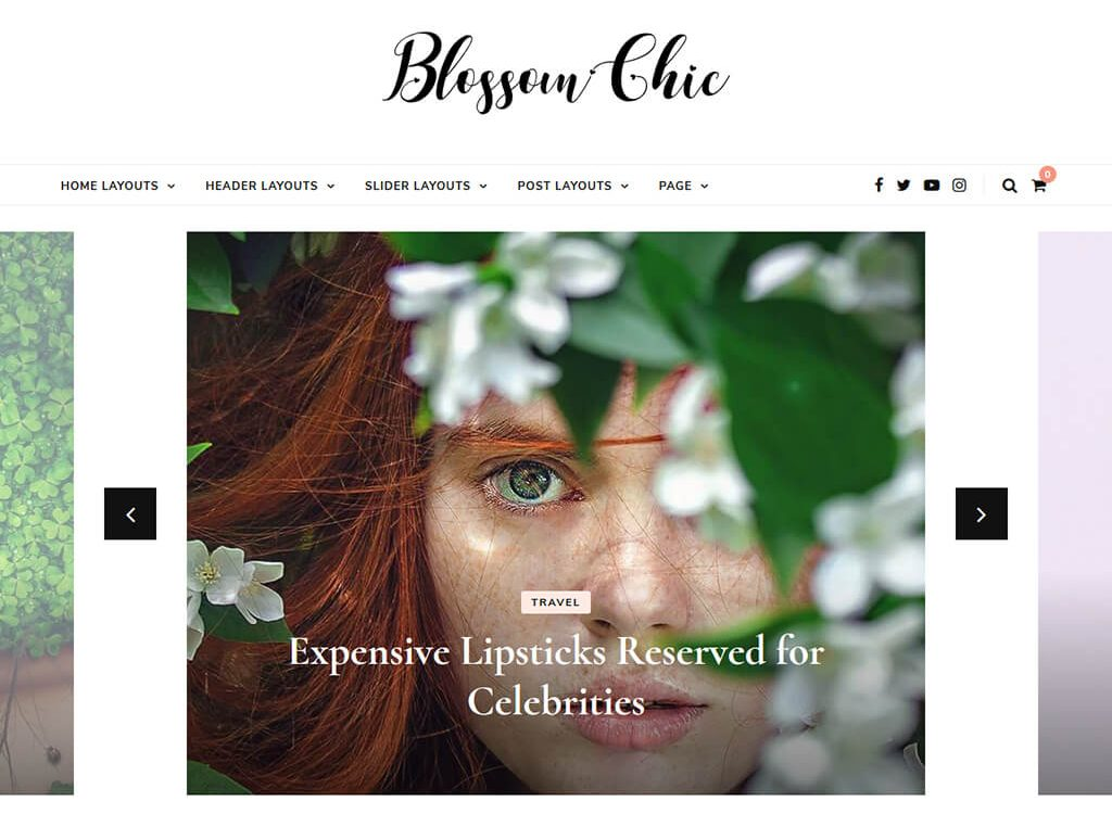 Blossom Chic Free WordPress theme